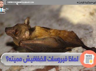 لماذا فيروسات الخفافيش مميته؟