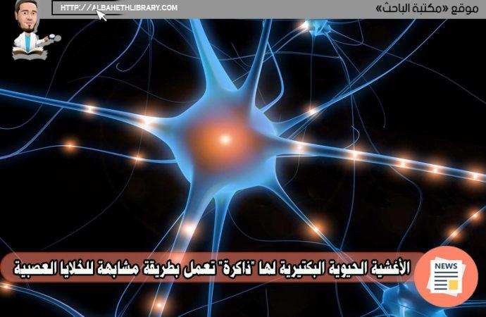 """الأغشية الحيوية البكتيرية لها """"ذاكرة"""" تعمل بطريقة مشابهة للخلايا العصبية"""